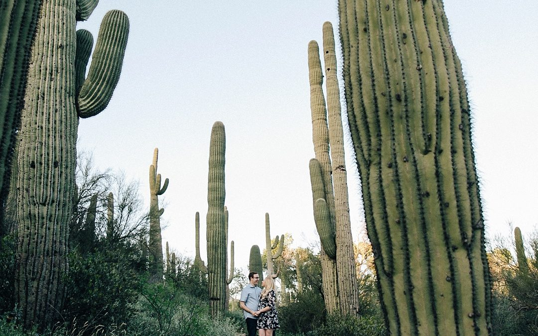 Cozy Cave Creek Engagement Photos With Saguaro Fields